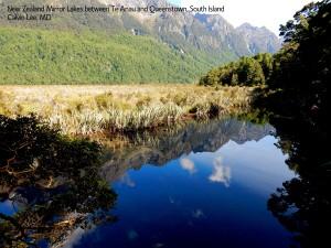 a mirror lakeDSCN2990 between Te Anau and Queenstown - Copy